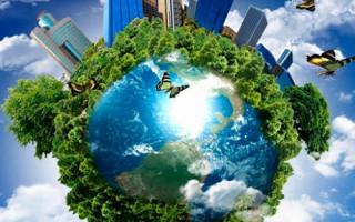 Экологические услуги важный момент в организации различных отраслей